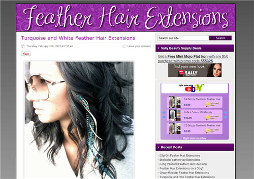 Feather Hair Extension Site Screen Shot
