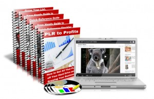 Hard Drive Full of PLR That You Need to Use? Curious About HOW to Use PLR?