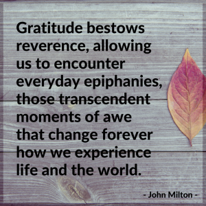 25.	Gratitude bestows reverence, allowing us to encounter everyday epiphanies, those transcendent moments of awe that change forever how we experience life and the world. - John Milton